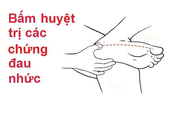 Tuyen Sinh Chung Chi Xoa Bop Bam Huyet Ở TIỀN GIANG